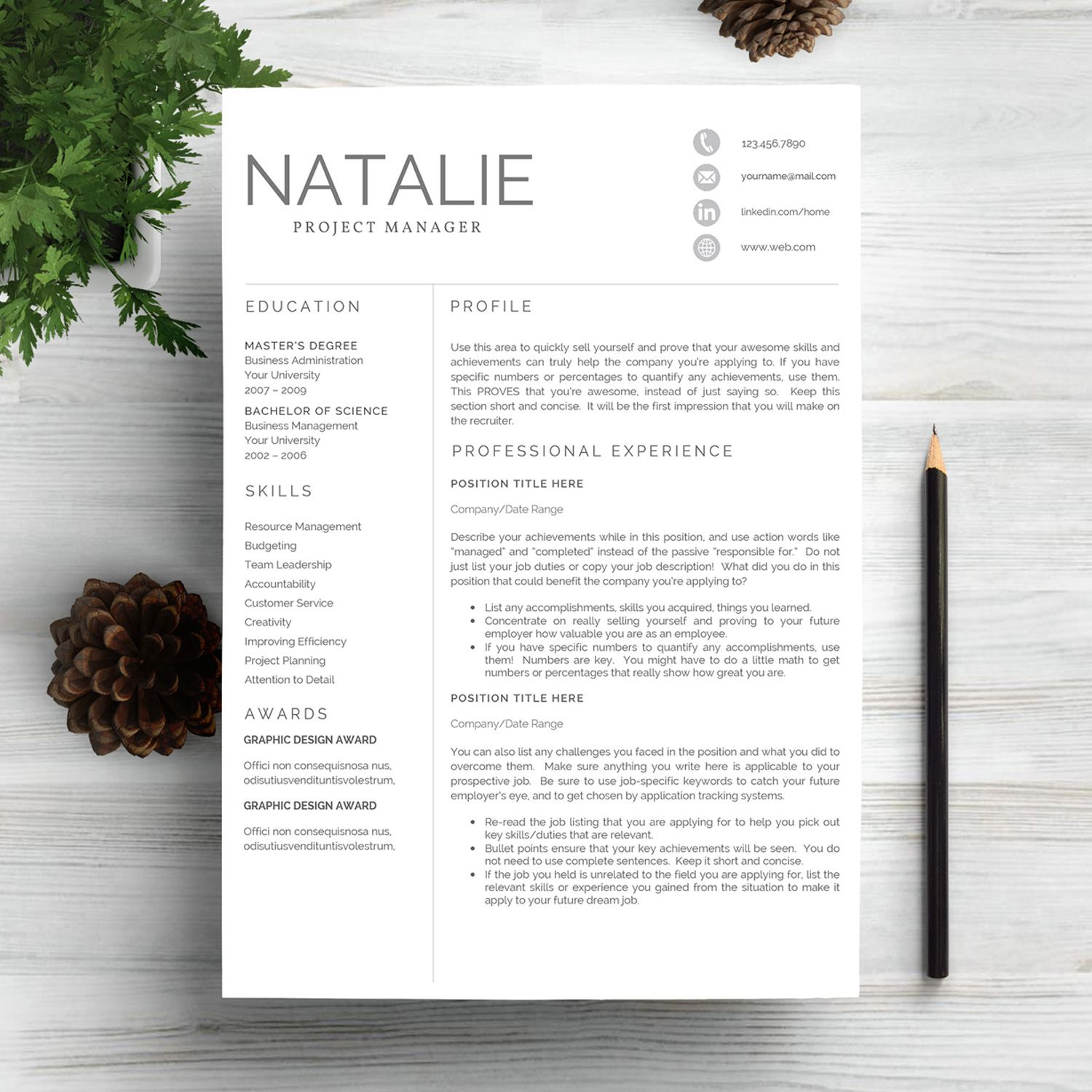 Professional Resume Template for Project Manager More