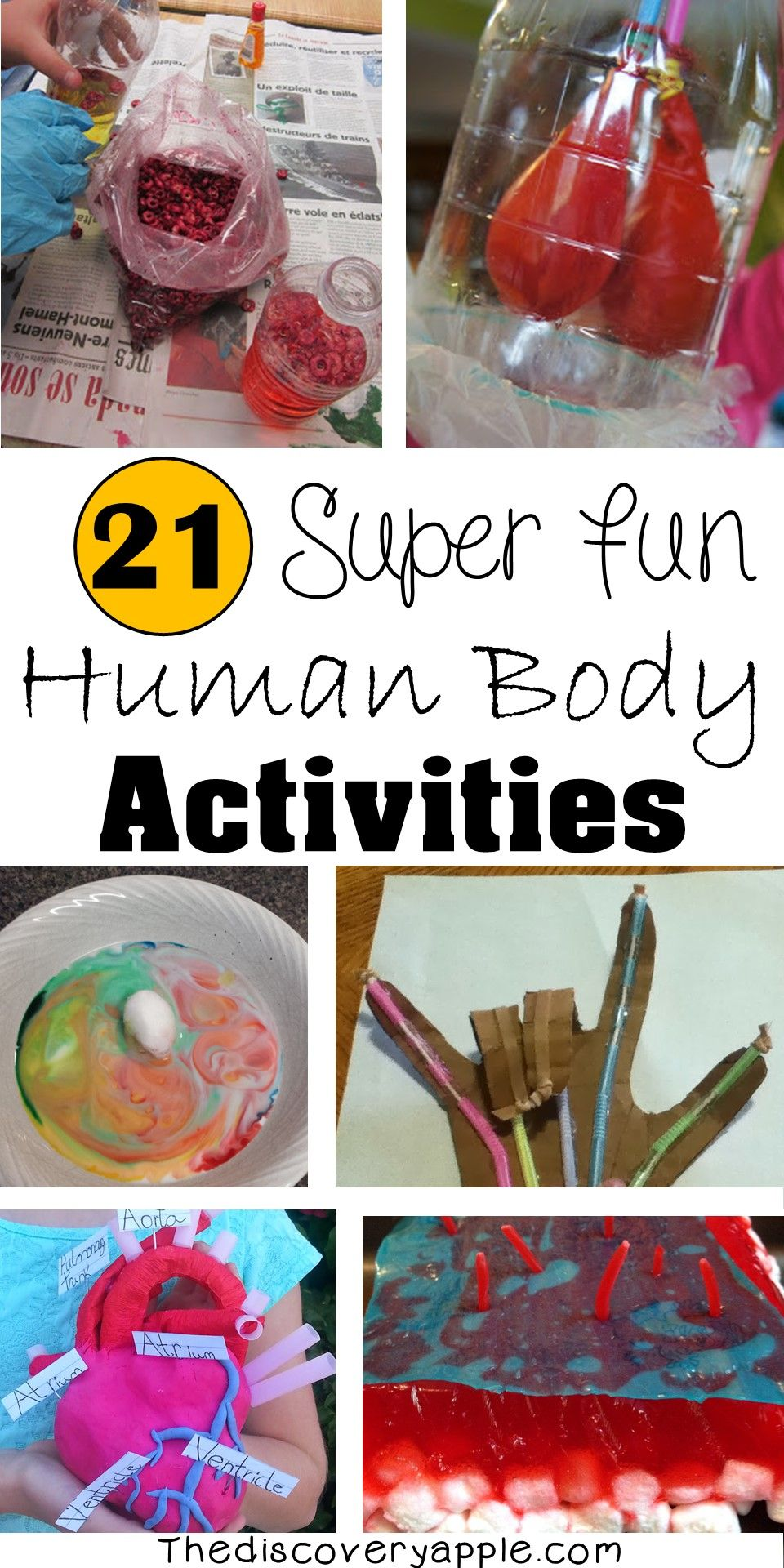 21 Super Fun Human Body Activities and Experiments for Kids