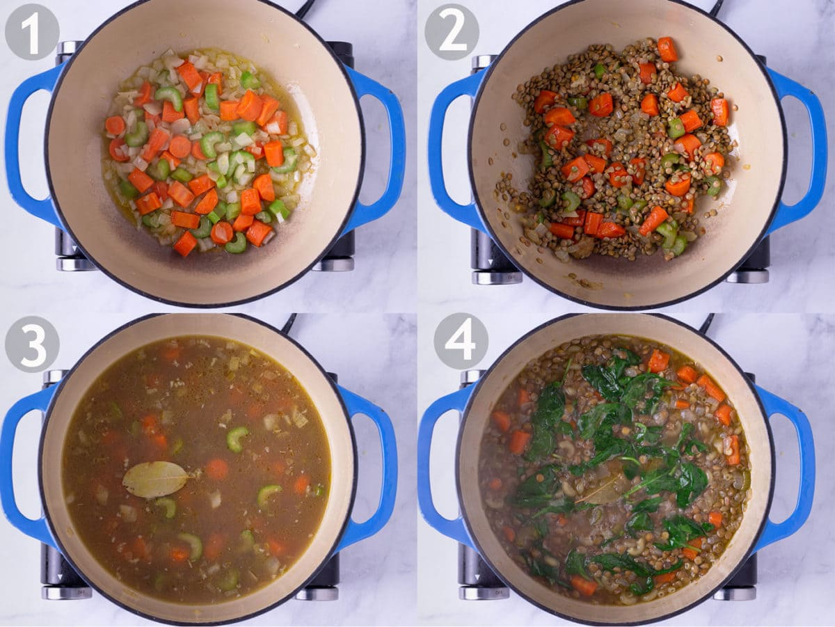 Step by step photos of making lentil soup: saute carrots, celery and onion, add garlic and lentils, add broth and bay leaf, simmer and stir in spinach.