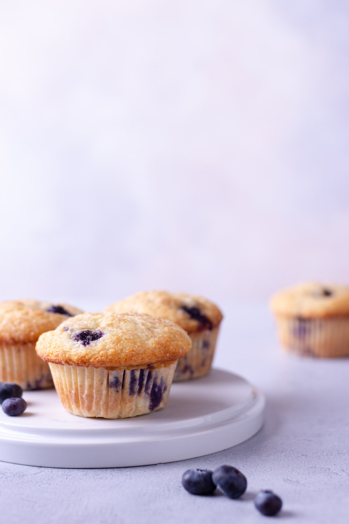 Straight on shot of a plate of Buttermilk Blueberry Muffins with a light blue background.