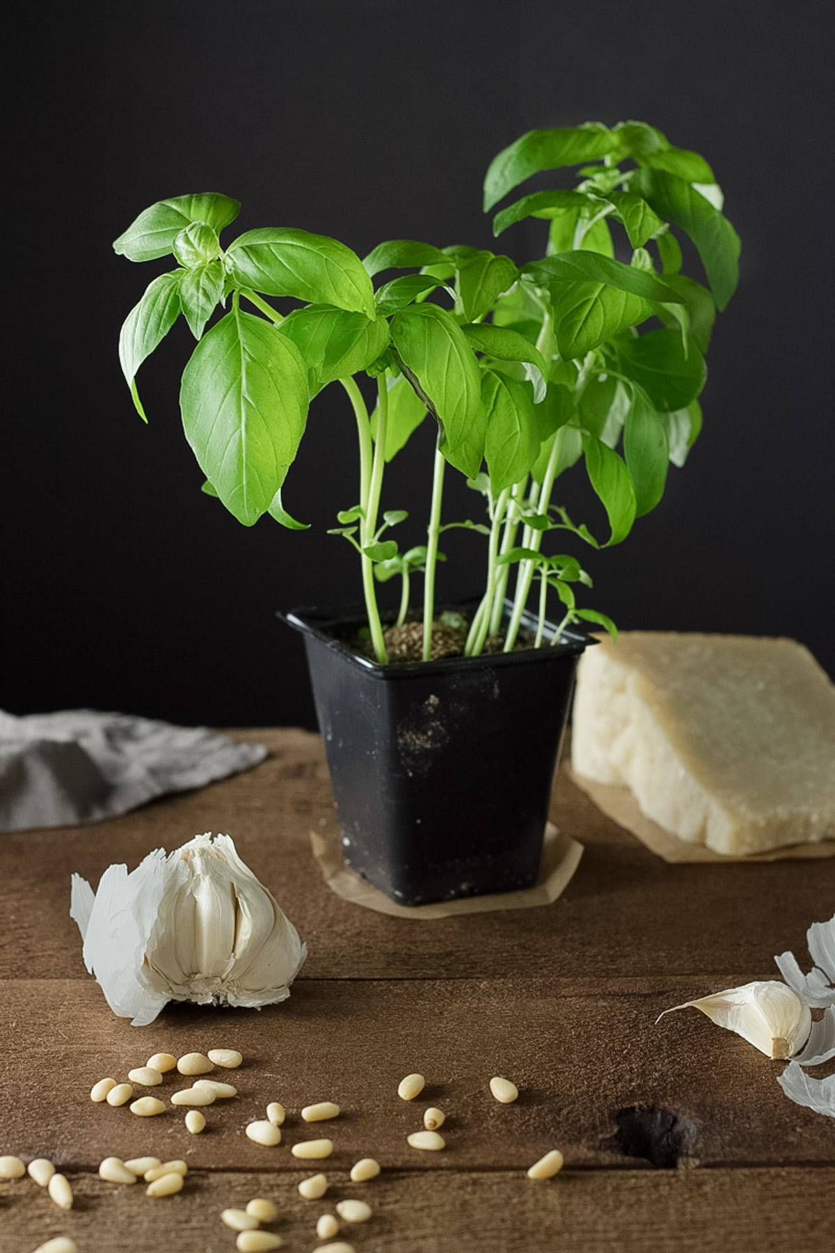 Ingredients for pesto, including basil, parmesan cheese, garlic and pine nuts.