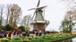 7 ways to enjoy Koninklijke Amsterdam …. PROOST!!
