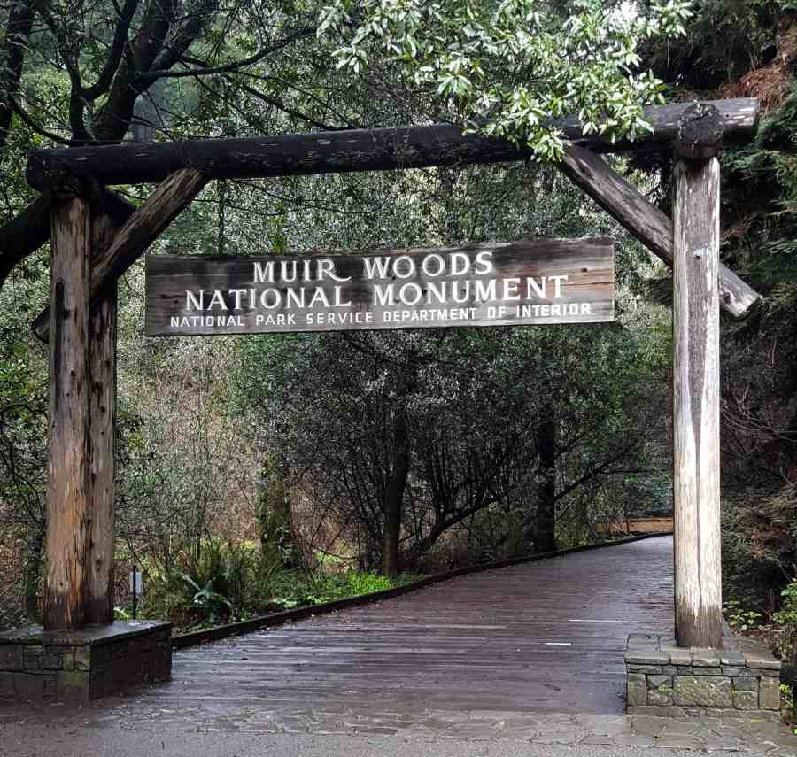 Beautiful Entrance - Tips for Visiting Muir Woods National Monument