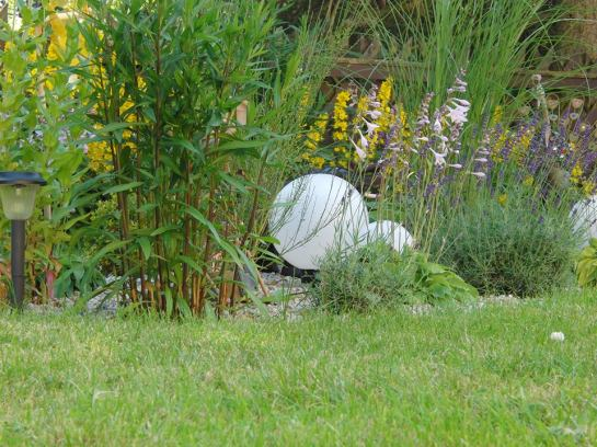 Unser Garten eine blühende Oase