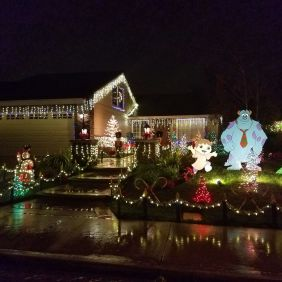 Christmas Lights in Camarillo