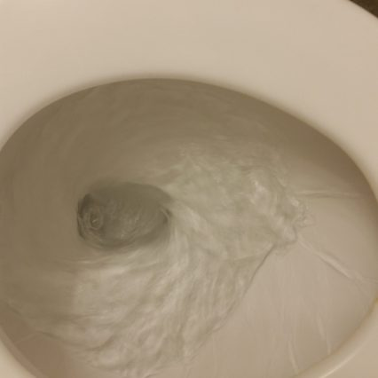 Wie funktionieren Toiletten in den USA