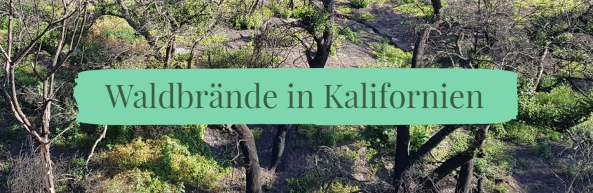 Waldbrände in Kalifornien