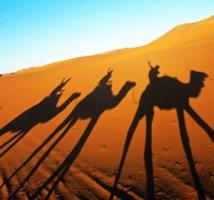 Morocco_Desert_Sahara