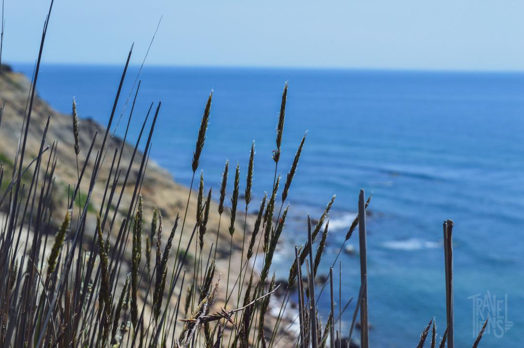 Overlooking the ocean on Block Island. New Shoreham, Rhode Island