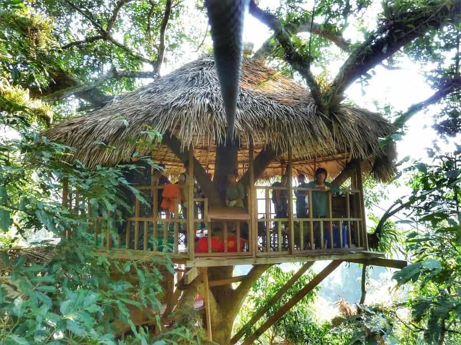 Gibbon Experience Laos