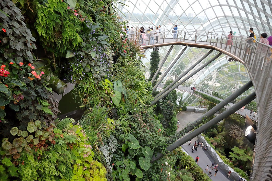 l'interno delle cupole dei gardens by the bay