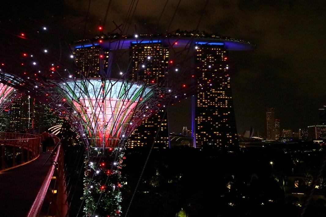 supertree groove di notte e marina bay sands, singapore