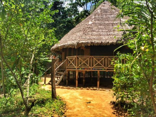 Ayahuasca in the Bolivian jungle - the temple
