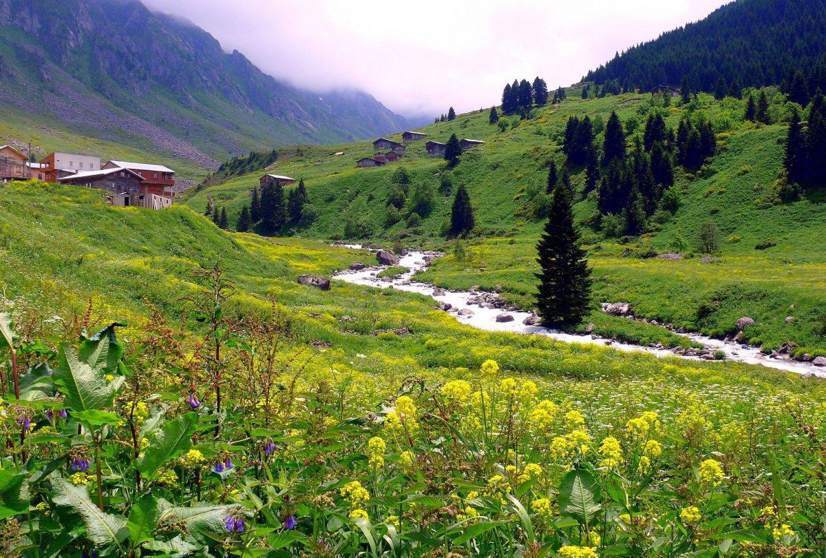 جولات سياحية الشمال التركي