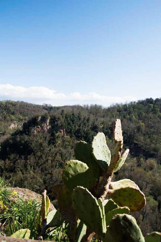 La Valle del Treja, sotto Calcata
