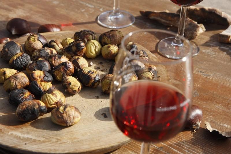 olio vino vignanello