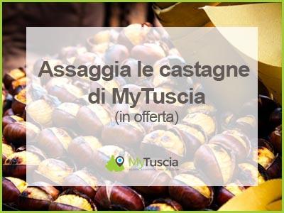 Castagne Mytuscia