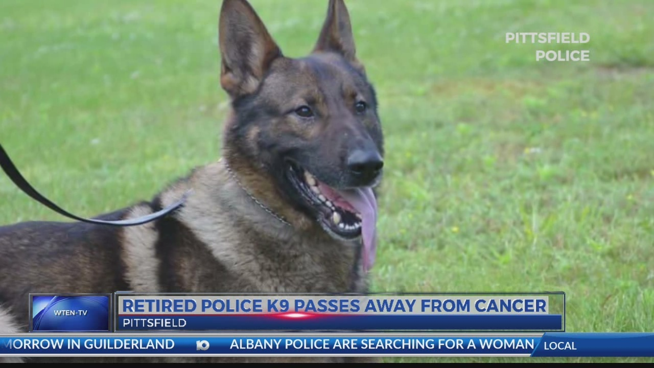 Retired police K9 passes away from cancer_1527072173940.jpg.jpg