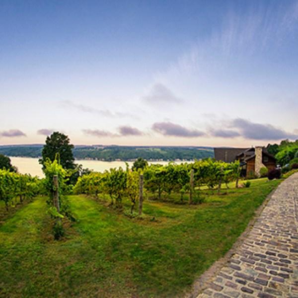 Finger Lakes Wine Country (1)_1535740843272.jpg.jpg