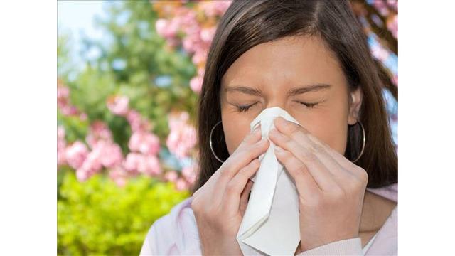 allergies_39088660_ver1.0_640_360_1554934828609.jpg