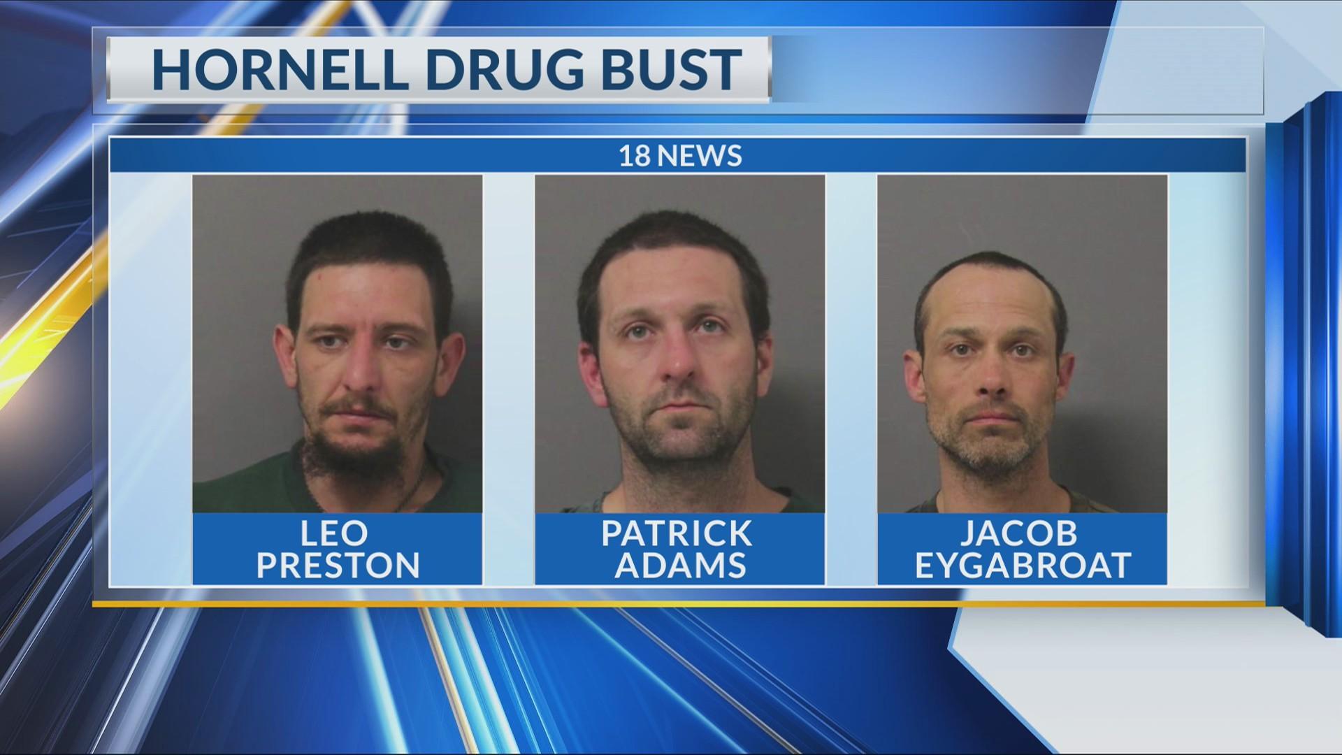 Hornell Drug Bust