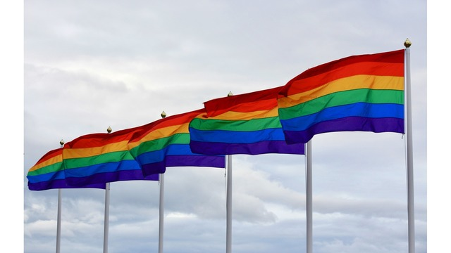 Pride Flags_1559918725098.jpg.jpg