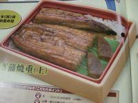 20090612-06121.JPG