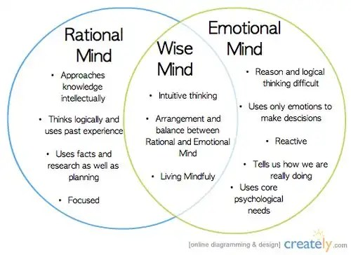 wise-mind infographic