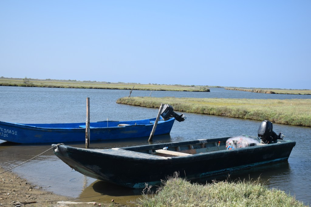 plava, boat, guided tour, Evros delta, river, Greece, Thrace, ecosystem