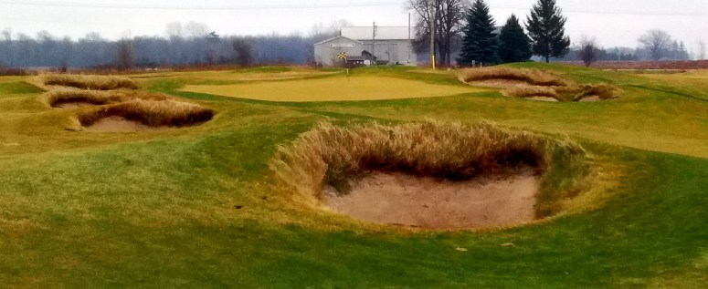 Image result for tarandowah golfers