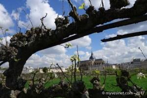 Découvrez le Potager du Roi à Versailles !Découvrez le Potager du Roi à Versailles !