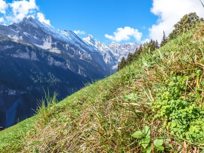 Gimmelwald, Switzerland | Hiking in the Swiss Alps | Murren | mountains | mountainside