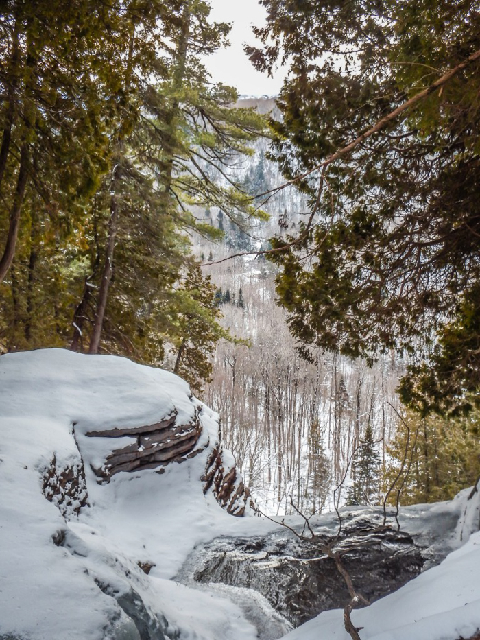 Ice Canyoning in Québec // Why You Should Be All up in This | The view through the trees while ice canyoning in Québec