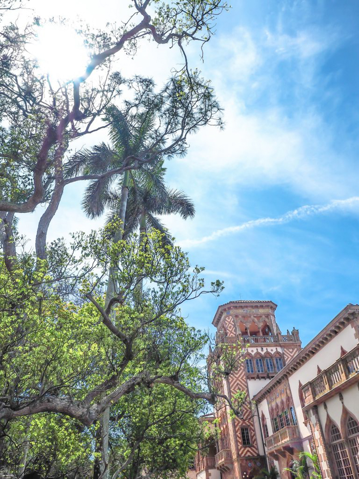 The Ringling // Getting My Italy Fix in Florida | Ca' d'Zan | Ringling | Sarasota, Florida