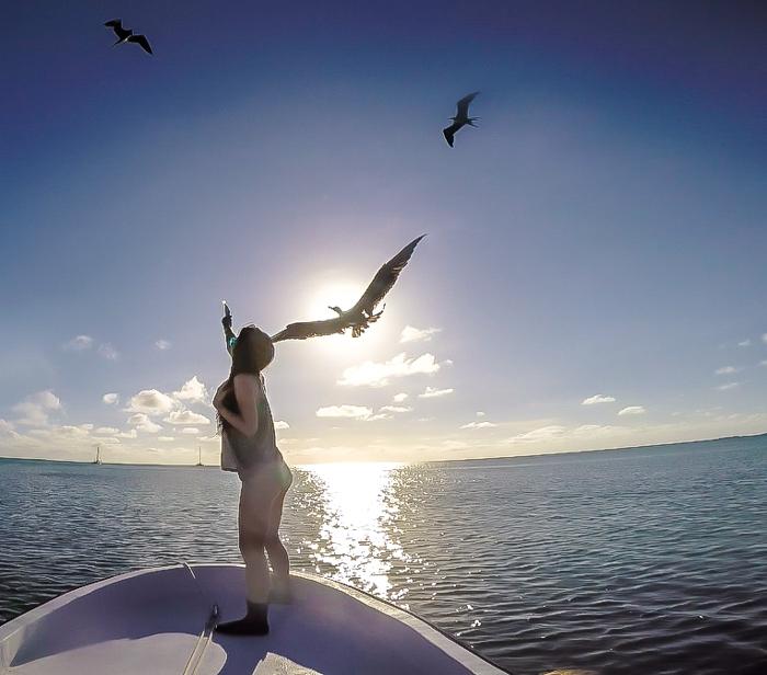 Snorkeling | Belize | Feeding birds with Caveman Snorkeling Tours in Caye Caulker, Belize