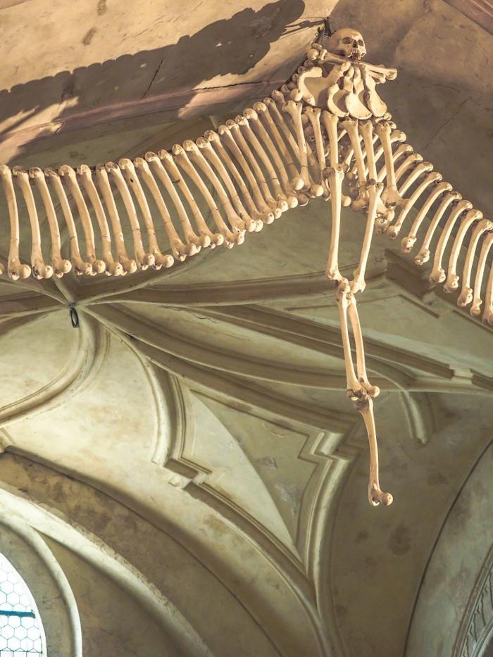 Inside the Sedlec Ossuary in Kutná Hora, Czech Republic, just one hour from Prague