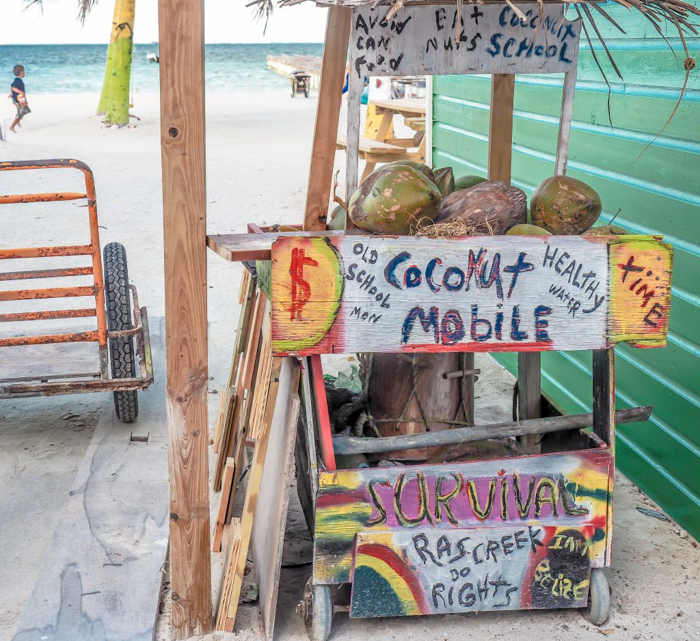 3 days in caye caulker, belize // coconut mobile