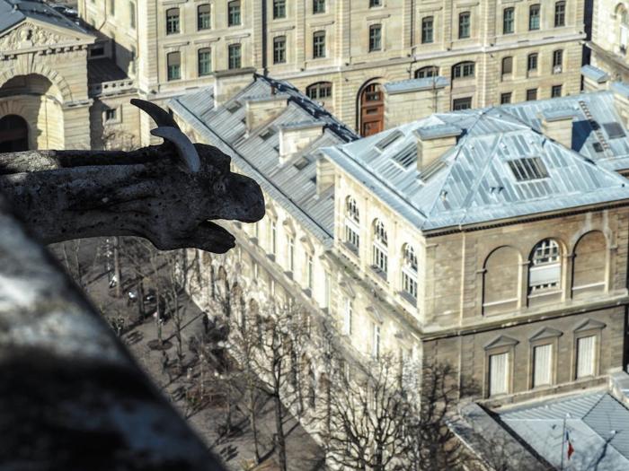 3 days in Paris, France | Paris Museum Pass | Paris Passlib' | Paris Visite | Towers of Notre Dame | gargoyle