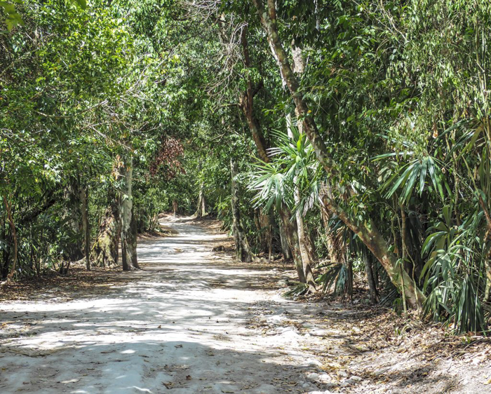 Hiking path near the ATM Cave in Belize | Map | San Ignacio, Belize | Cayo District | Tapir Mountain Nature Reserve | Actun Tunichil Muknal | Maya | Mayan archaeological site | skeletal remains | Cave of the Sone Sepulcher | Pacz Tours