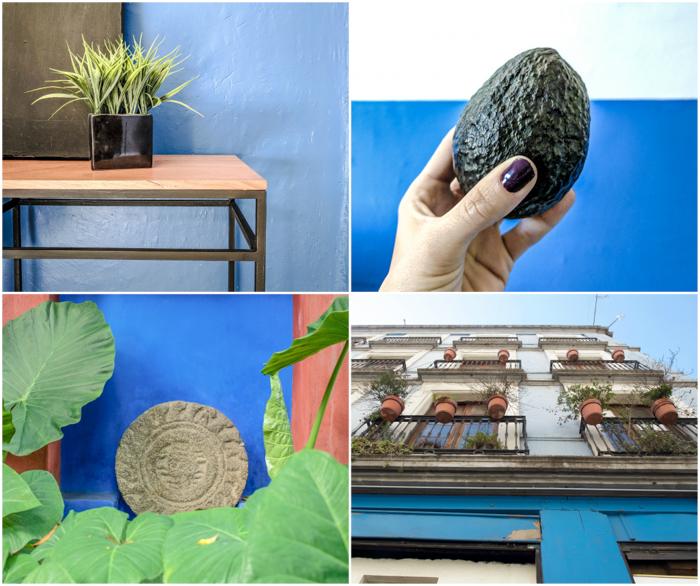 17 Things That Shocked Me in Mexico | Mexico City, Oaxaca de Juarez | Mexico Blue
