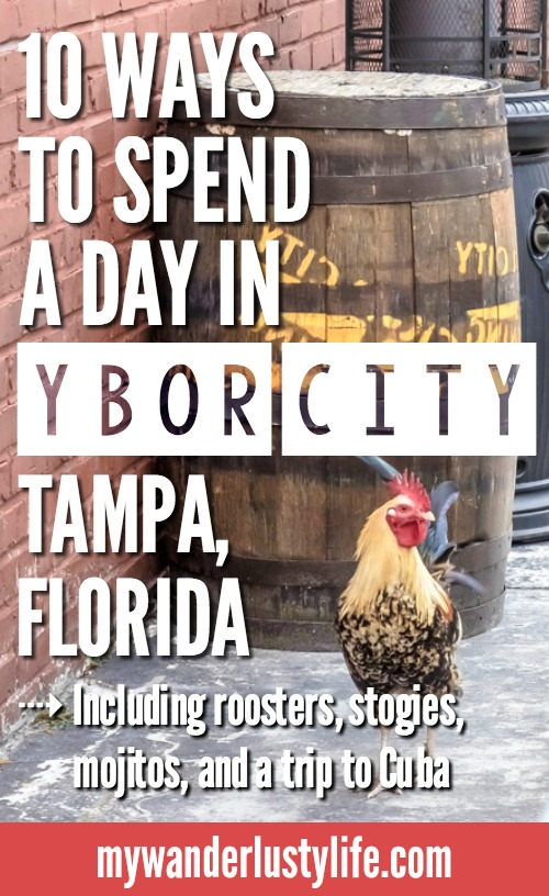 11 Ways to Spend a Day in Ybor City | Tampa, Florida | Cigar City | Cigar history, cuban sandwiches, Jose Marti Park, cider and mead, coppertail brewing co, ybor wild chickens and roosters