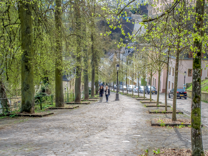 Day Trip to Luxembourg | Should you take one or not? | What to see in Luxembourg | What to do in Luxembourg | Day trip to Luxembourg from Brussels, Belgium | Luxembourg City | Viator | street