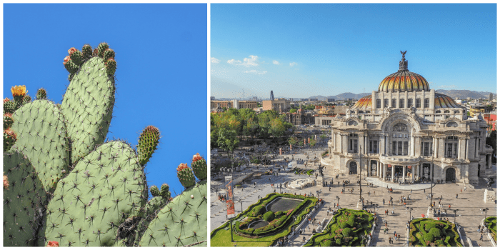 15 essential Mexico City experiences for the best trip ever | Mexico City must-do | Things to do in Mexico City | What to do in Mexico City | CDMX | Mexico DF | Can't-miss Mexico City activities and sights | Mexico City sightseeing | Palacio de Bellas Artes and prickly pear cactus