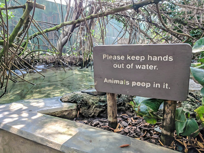 Keeping it real at the Florida Aquarium // How to use the Tampa Bay CityPASS as a childless adult. #aquarium #tampabay #florida #citypass #traveltips #vacation #tampa #timebudgettravel