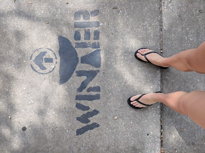 Winter dolphin tail on sidewalk, clearwater marine aquarium // How to use the Tampa Bay CityPASS as a childless adult. #dolphintale #aquarium #tampabay #florida #citypass #traveltips #vacation #tampa #timebudgettravel