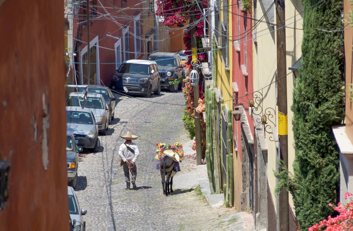 2 days in San Miguel de Allende travel tips | Cowboy and donkey #sanmigueldeallende #mexico #traveltips #timebudgettravel #sanmiguel #donkey