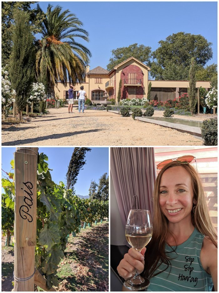 Maipo Valley Little Wine Bus | Wine Tasting in Chile: Casablanca vs. Maipo Valley | How to decide where to go wine tasting in Chile | Maipo valley wineries | #chile #wine #winetasting #vineyard #maipovalley #winebus