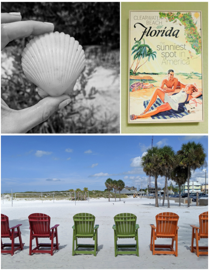 Sign and seashell | My 5 Favorite Ways I Spend a Weekend in Clearwater, Florida | #clearwater #florida #clearwaterbeach #seashell