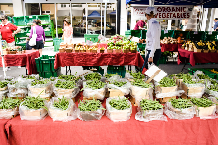 Sarasota Farmer's Market / 3 days in Sarasota, Florida / What to do in Sarasota, Where to eat in Sarasota, itinerary and information guide