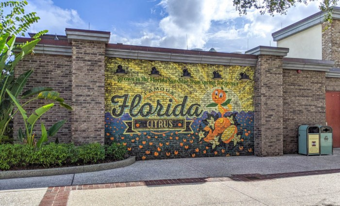 Visiting Disney World During the Pandemic: Everything You're Dying to Know | Disney World in 2020, what it's like to visit disney world right now. | Florida mural at Disney Springs